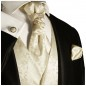 Preview: Wedding vest set champagne