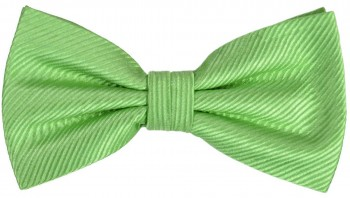 Men´s Bow Tie Pretied solid green