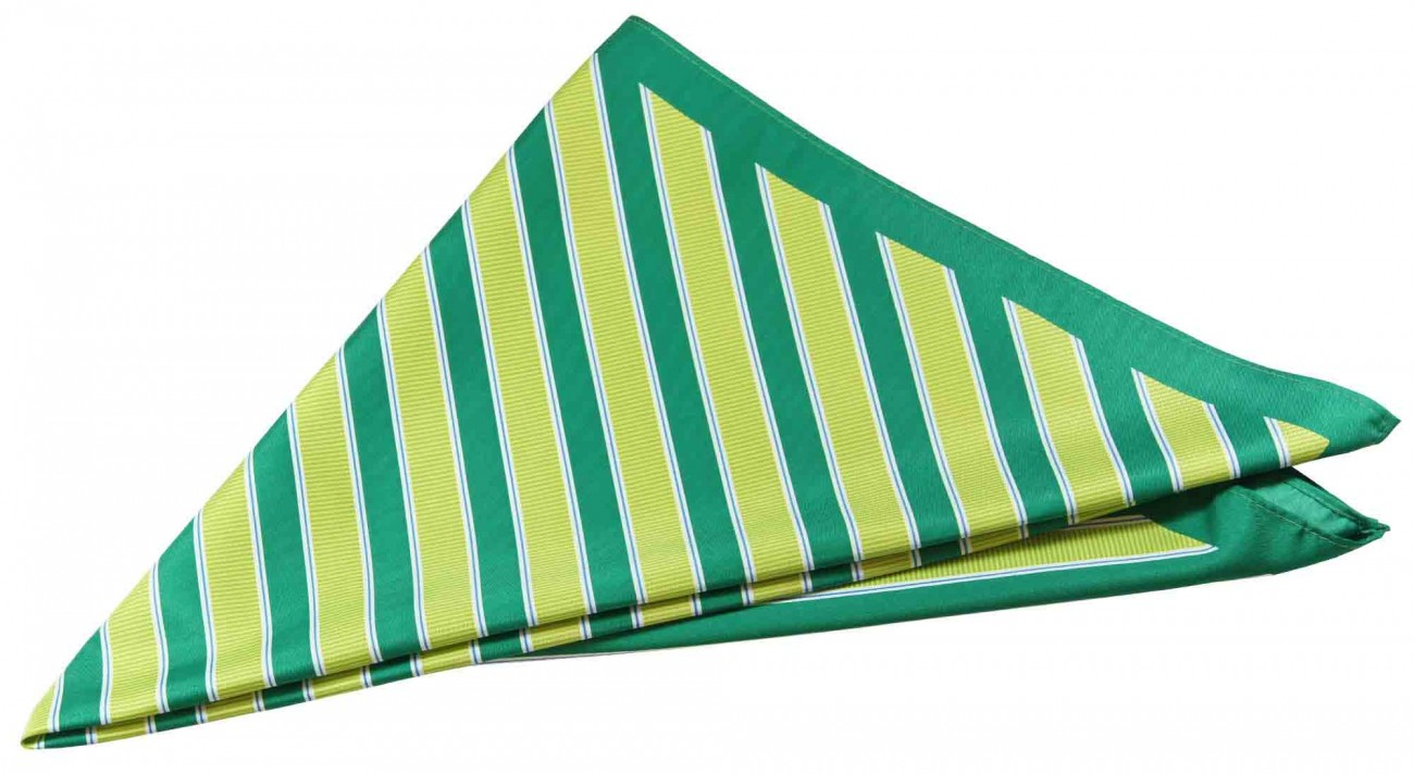 Paul Malone ladies scarf green striped 262